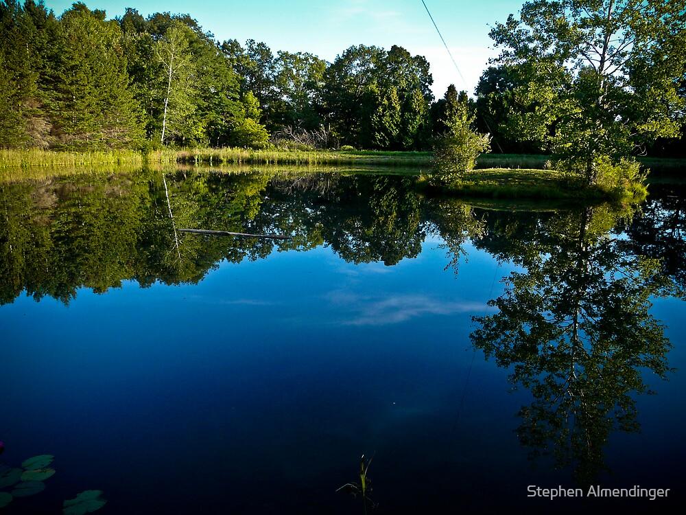 Beautiful Pond by Stephen Almendinger