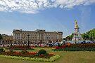 Buckingham Palace by Steven Guy