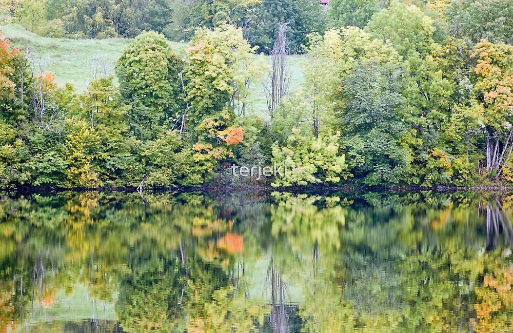 Autumn 2008 by terjekj