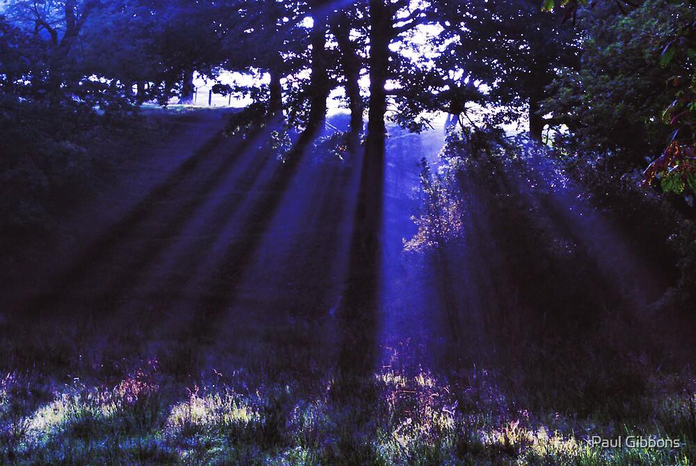 Blue Ray by spottydog06