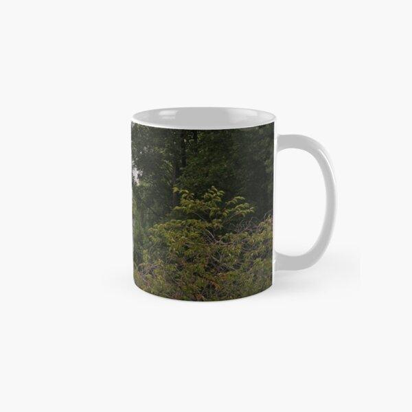 St James Park Classic Mug