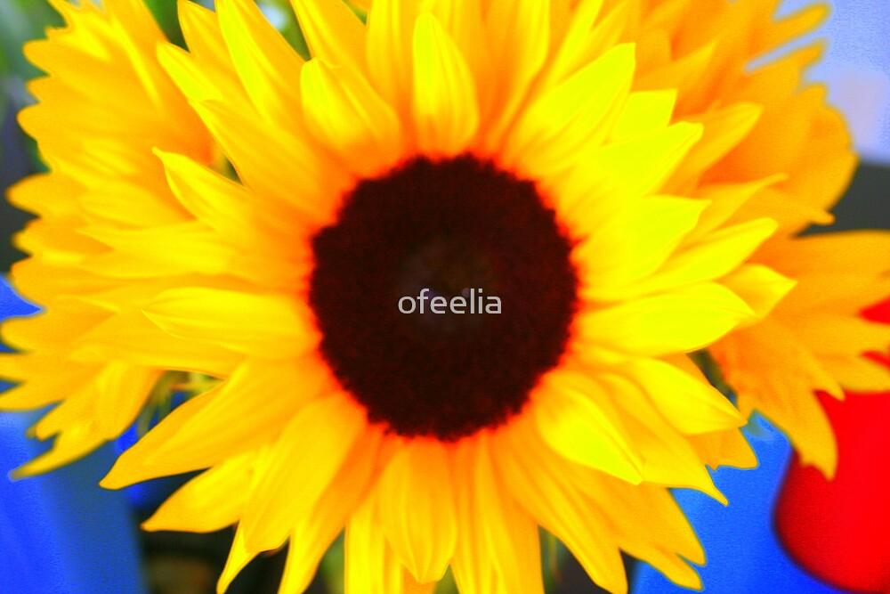 bright by ofeelia