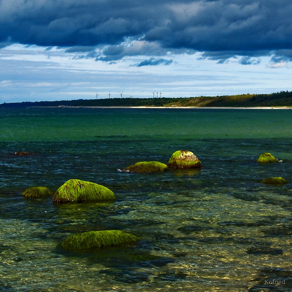 The Baltic Sea by Kofoed