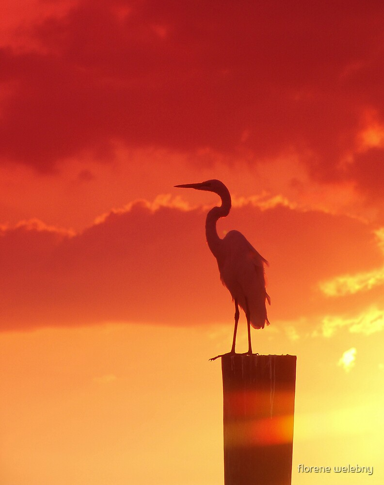 Against A Red Sky by florene welebny