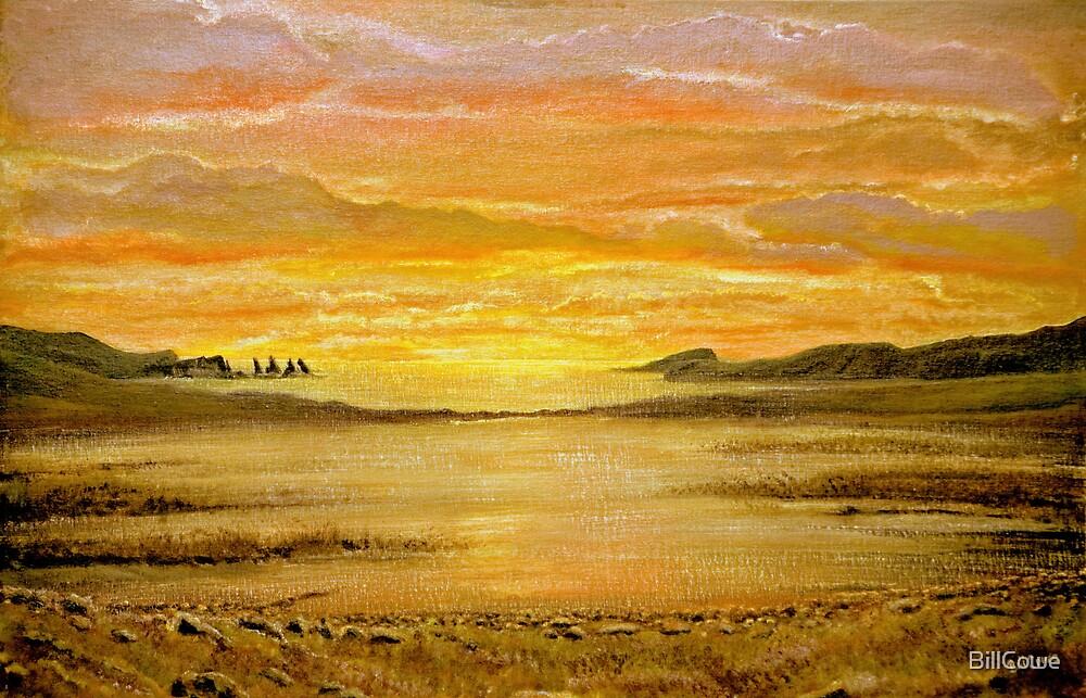 Simmer Dim, Shetland  by BillCowe