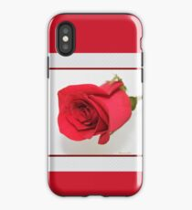 Let Me Call You Sweetheart ~ A Rose iPhone Case