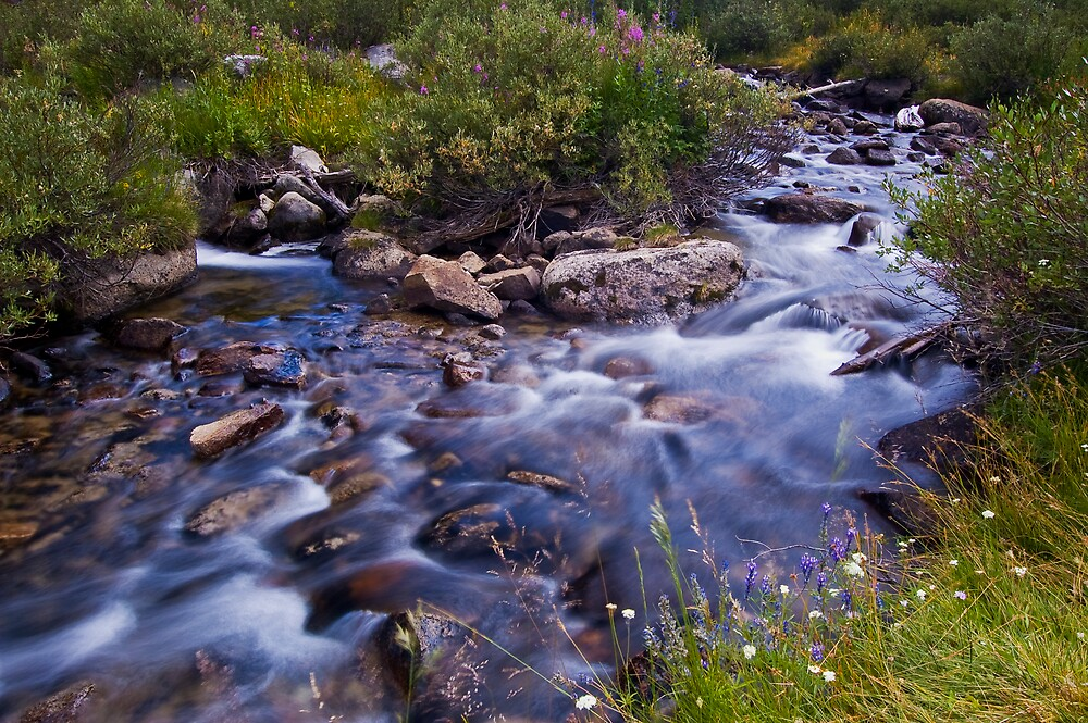 Rock Creek Near Mosquito Flats by Justin Mair