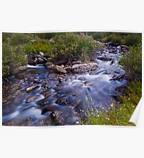 Rock Creek Near Mosquito Flats Poster