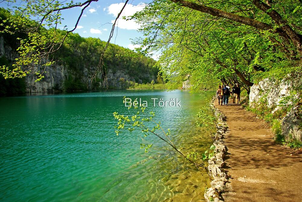 Spring colors in Plitvice N.P. by Béla Török