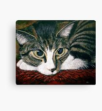 Pooky Canvas Print