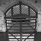 Traitors' Gates by Steven Guy