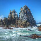 Camel Rock Encounter by Michael Matthews