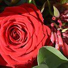 Red birthday rose by Arie Koene