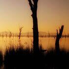 Golden Lake  by cjcphotography