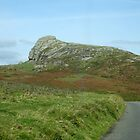 Somewhere on Dartmoor, South Devon, England by trish725