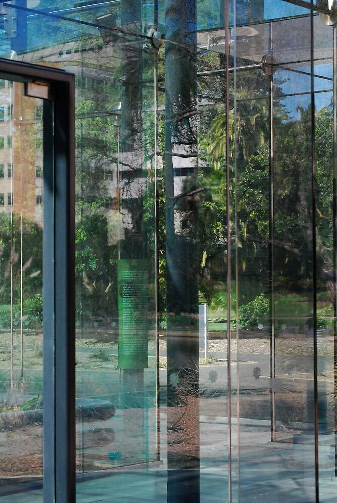 glasshouse reflections by Princessbren2006