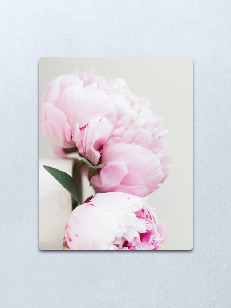 pint Peony Peonies Flower Art Print Poster Canvas Scandi Blush Black White