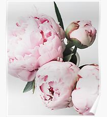 Flowers print, Scandinavian, Peony, Fashion print, Scandinavian art, Modern art, Wall art, Print, Minimalistic, Modern Poster