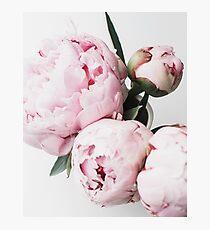 Blumendruck, skandinavisch, Pfingstrose, Modedruck, skandinavische Kunst, moderne Kunst, Wandkunst, Print, minimalistisch, modern Fotodruck