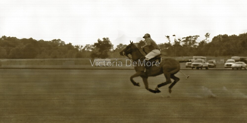 Polo Gallop by Victoria DeMore
