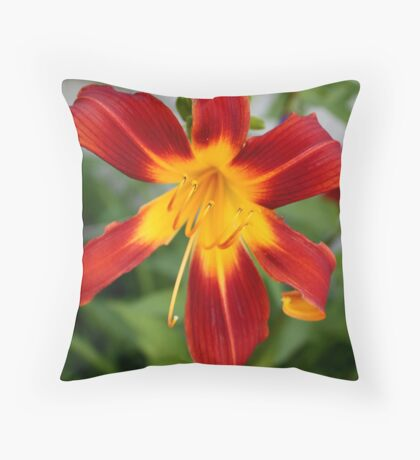 Red Daylily Throw Pillow