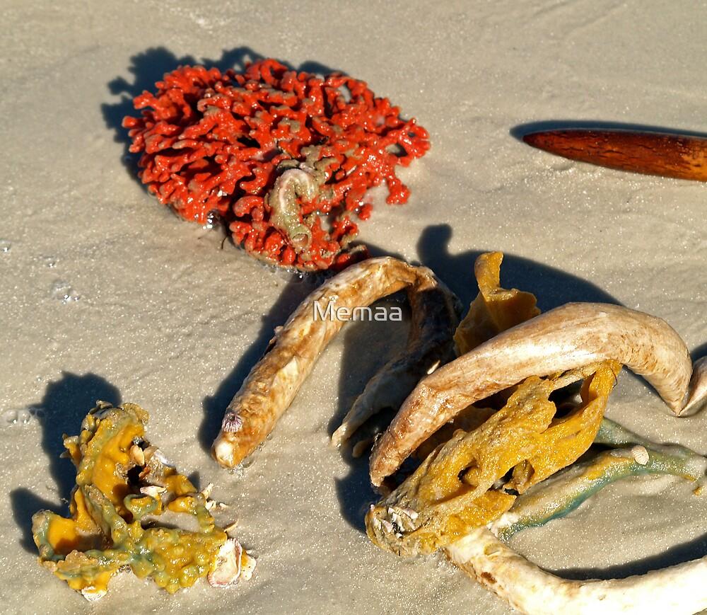 Natural Sea Live Still by Memaa
