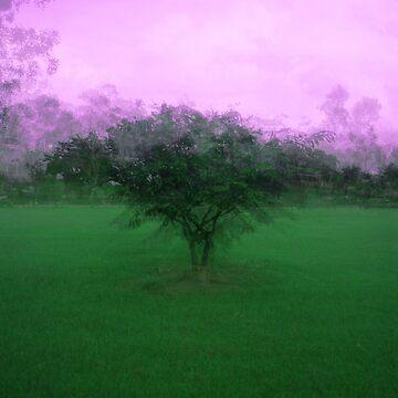 Trees by CRASHCooper