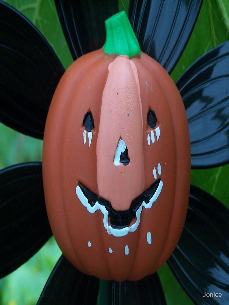 Halloween Closeup by Jonice