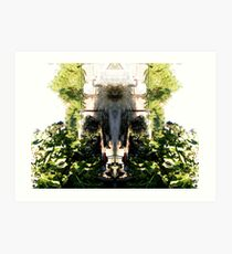 Northcote Community Gardens Fantasy 1 (the old lady of the garden) Art Print