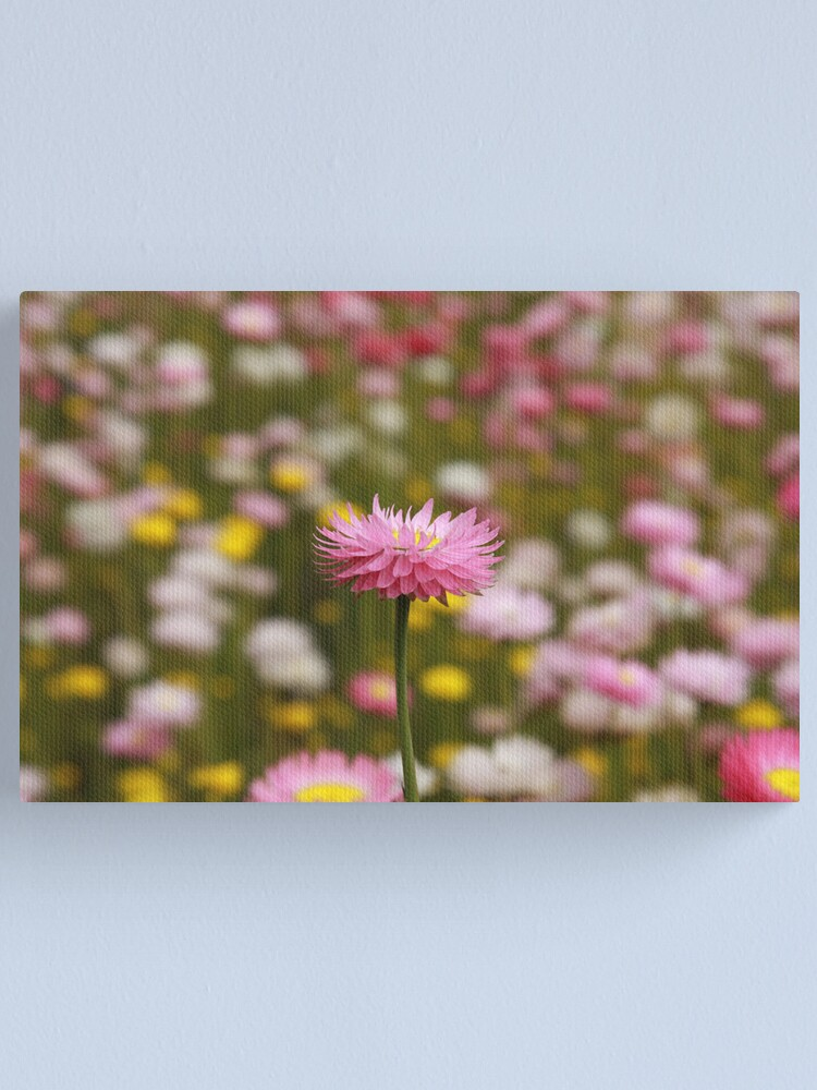 Alternate view of Standing out from the crowd Canvas Print