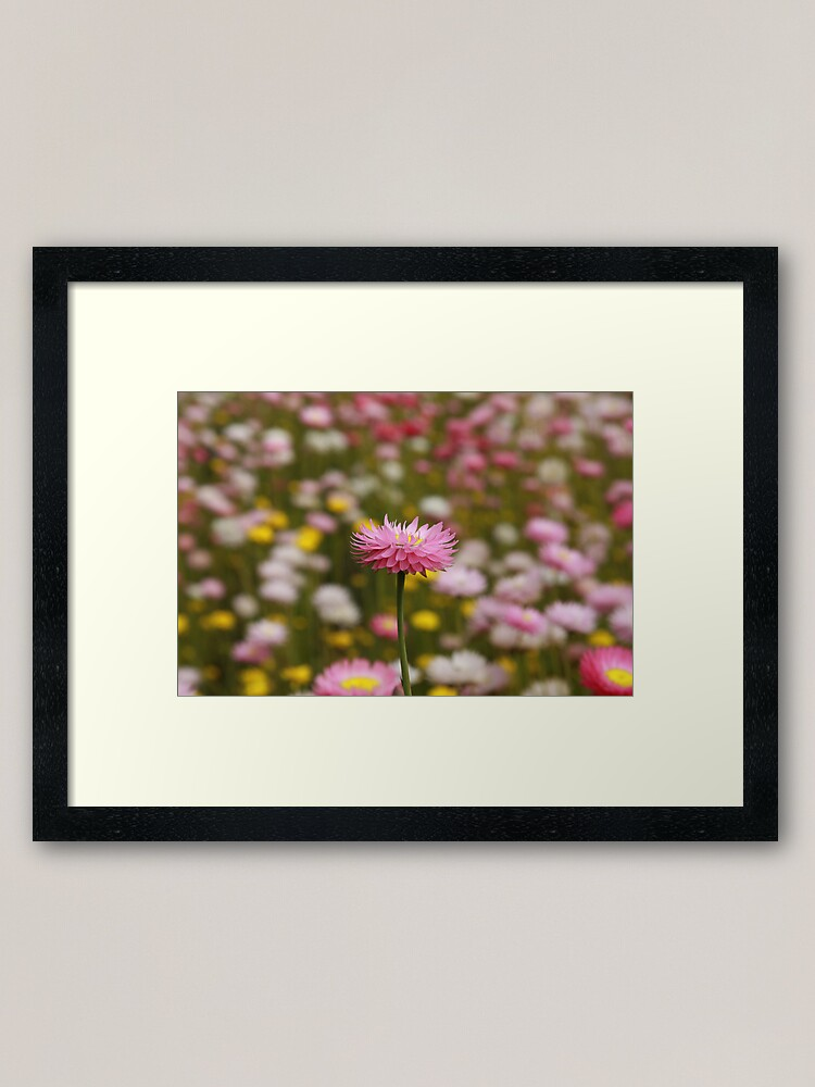 Alternate view of Standing out from the crowd Framed Art Print