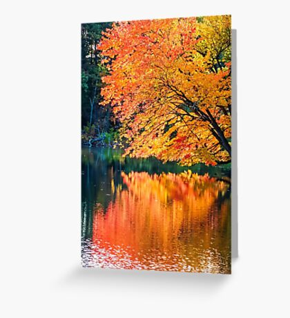The Magic of Autumn in New England Greeting Card