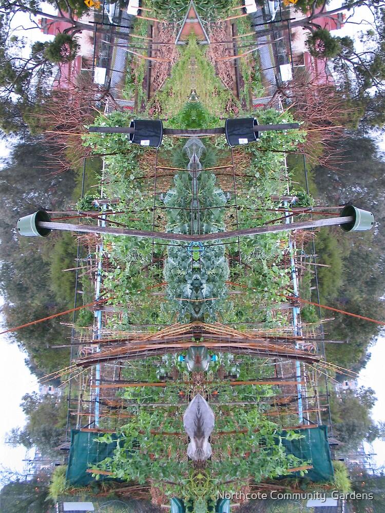 Northcote Community Gardens 10 by Northcote Community  Gardens
