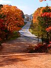 Two Country Roads by NatureGreeting Cards ©ccwri