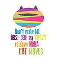 Don't Make me Bust out my Crazy Rainbow Ninja Cat Moves by jitterfly