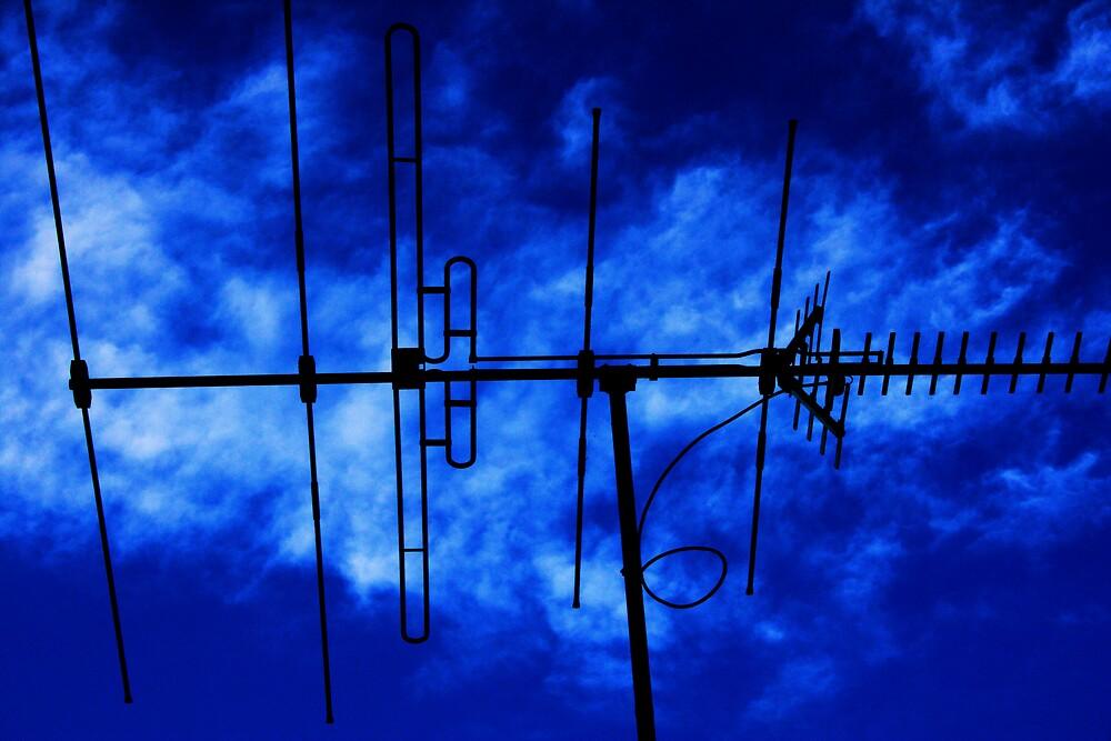 blue sky by Matthew  Smith
