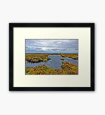 Highlands of Ireland, near Dublin Framed Print