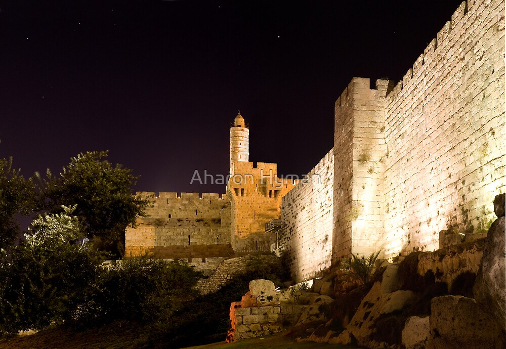 The Tower Of David by Aharon Hyman