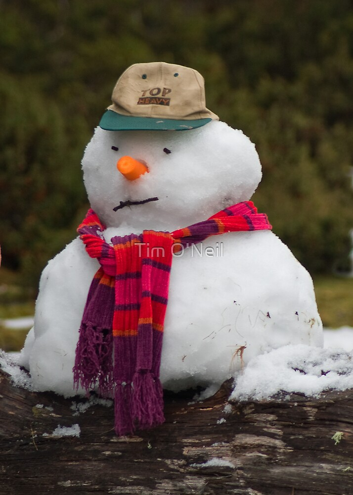 Snowman   by Tim O'Neil