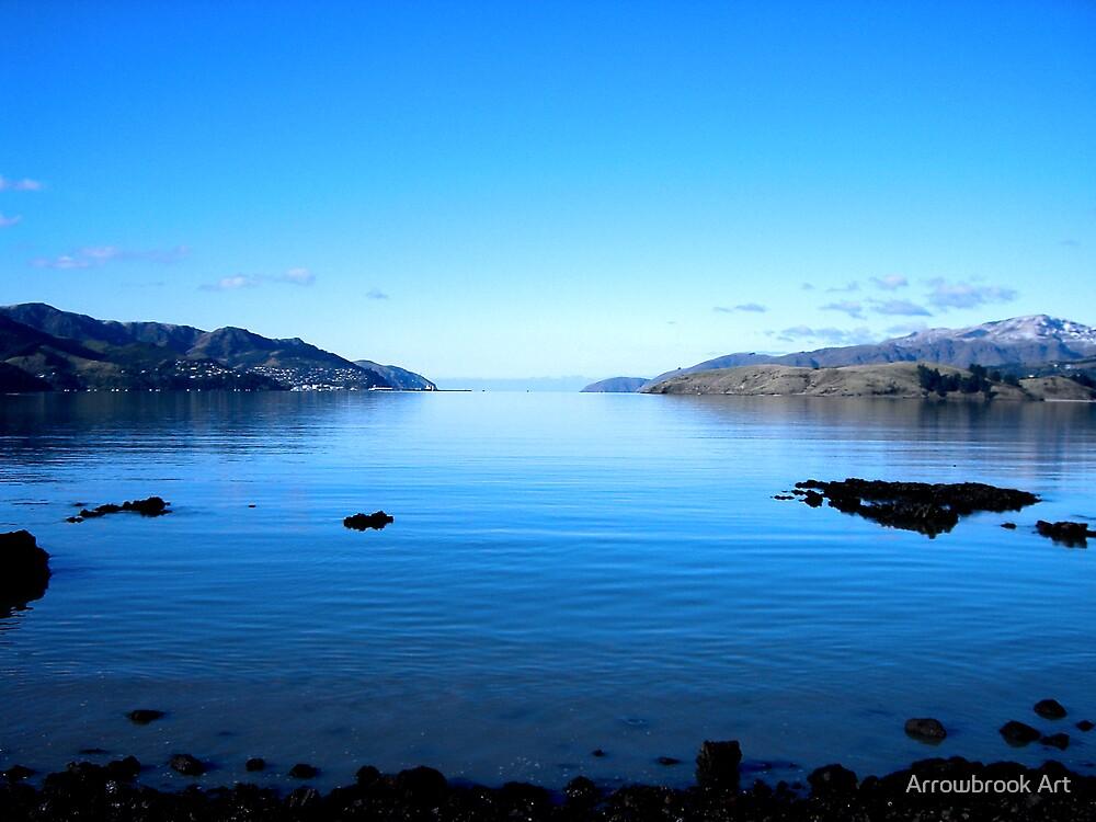 Akaroa Harbour - NZ by John Brotheridge