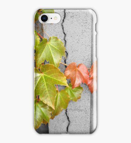 Splitting Season iPhone Case/Skin