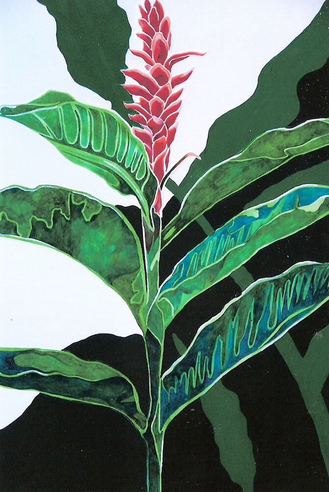 Heliconia by Megan Lane