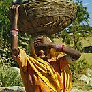 Old woman with big basket - India by Christophe Dur