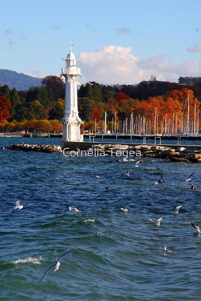 white lighthouse by Cornelia Togea
