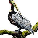 Pelican No.6 by christinahewson