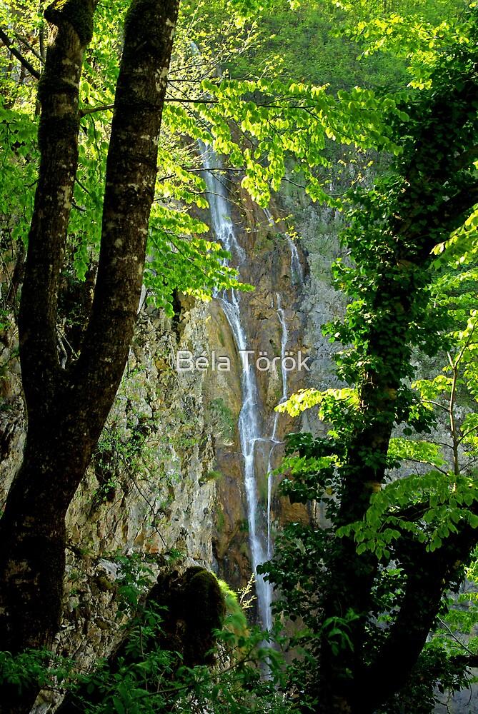 Framed waterfall by Béla Török