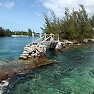 Quaint old foot bridge,  Bermuda by John Gaffen