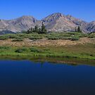 another Cottonwood Pass Day  by Paul Gana