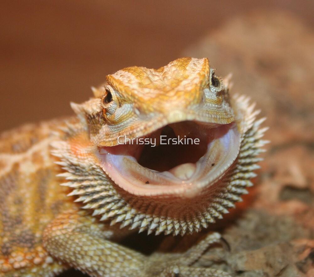 Bearded Dragon by Chrissy Erskine