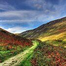 views from around Pistyll Rhaeadr  by Jon Baxter